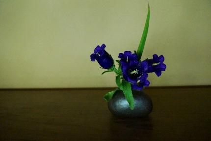 LUCCA的京都の旅_b0122805_1859653.jpg