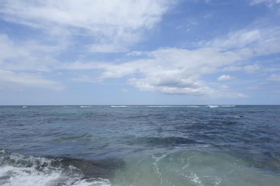 ハワイ2017 その6 ラニアケアビーチでホヌとHONOLULU COFFEEでお茶_e0230011_17065102.jpg