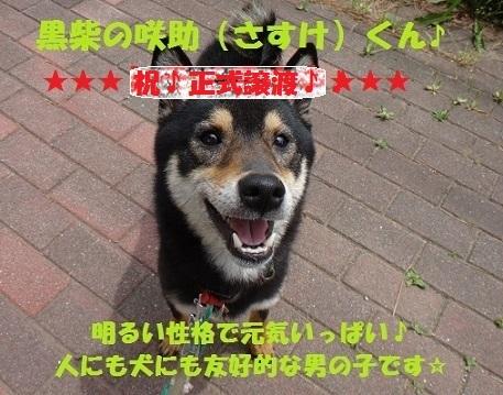 f0121712_21473274.jpg