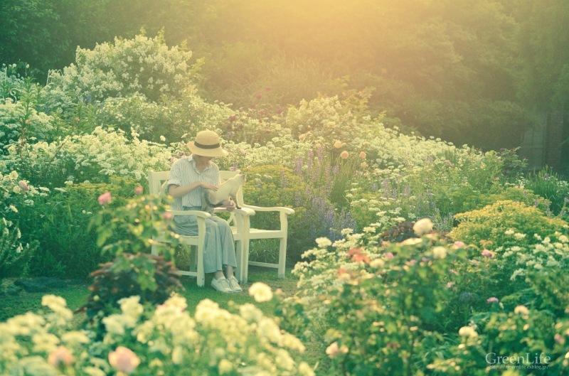 The Secret Garden   #4_f0321522_15401493.jpg