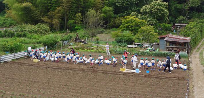 六国見山で幼稚園児が楽しそうにジャガイモ掘り(6・7)_c0014967_2451187.jpg