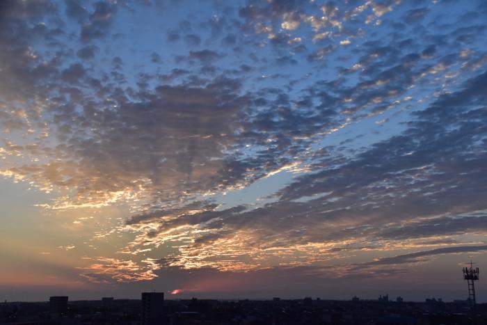 いきなり梅雨の晴れ間で(≧∇≦)_c0049299_23320959.jpg