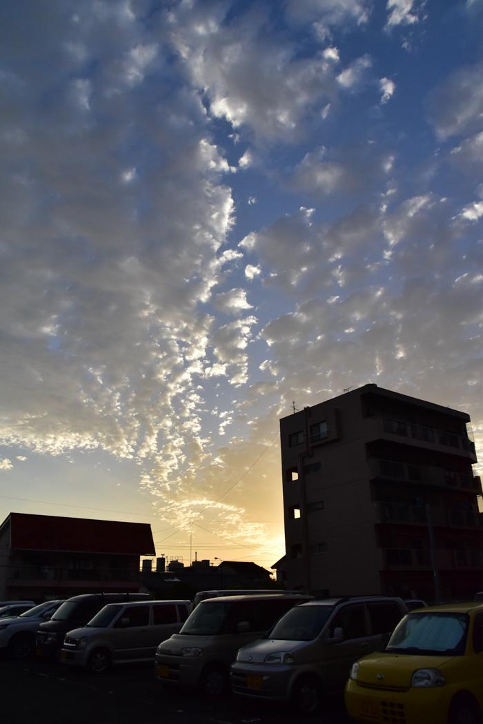 いきなり梅雨の晴れ間で(≧∇≦)_c0049299_23324830.jpg