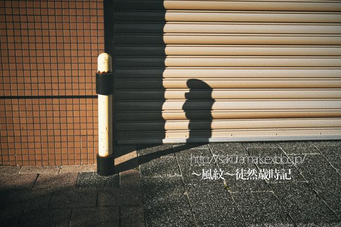 伸びる影。_f0235723_20121214.jpg