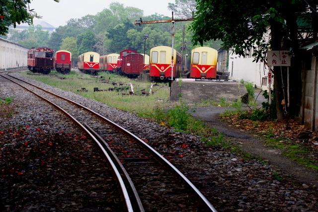 工場や鉄道施設のリノベーションを彩る木々の緑_d0362031_09262465.jpg