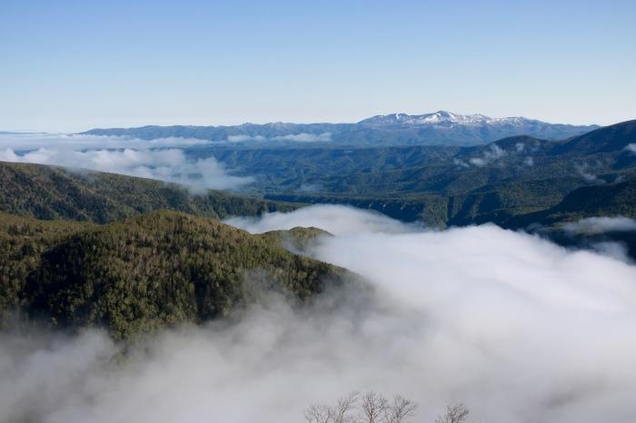 【黒岳五合目】北海道旅行 - 4 -_f0348831_19002772.jpg