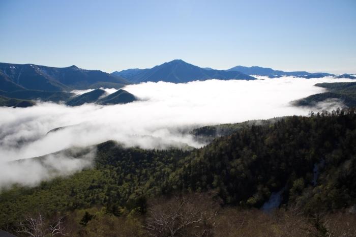【黒岳五合目】北海道旅行 - 4 -_f0348831_19003353.jpg