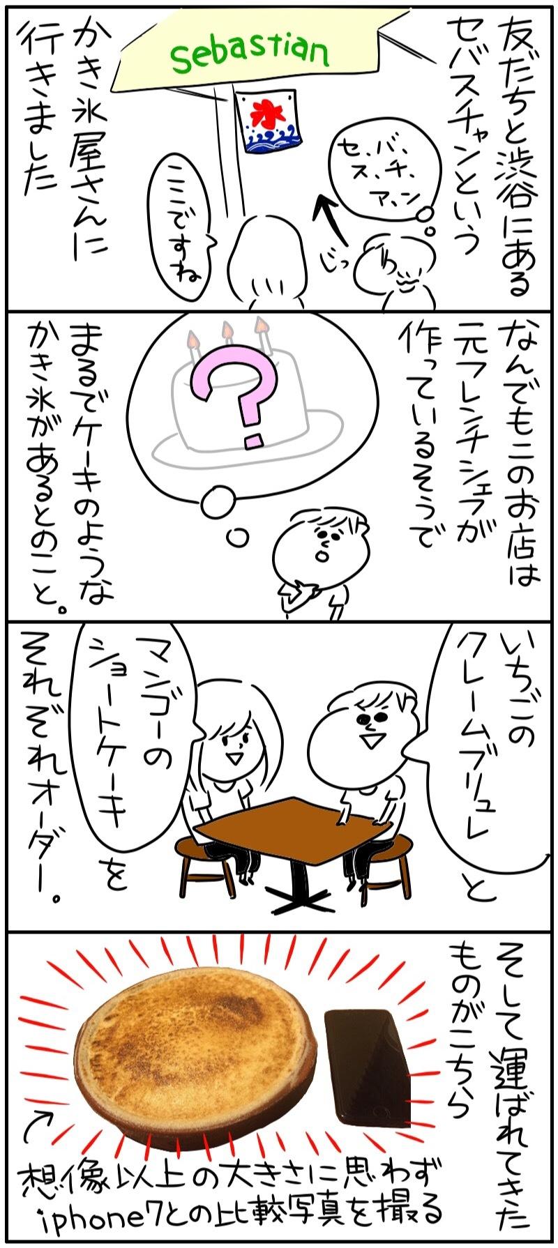 ほしみの飯道楽〜セバスチャン〜_f0346353_17313313.jpg