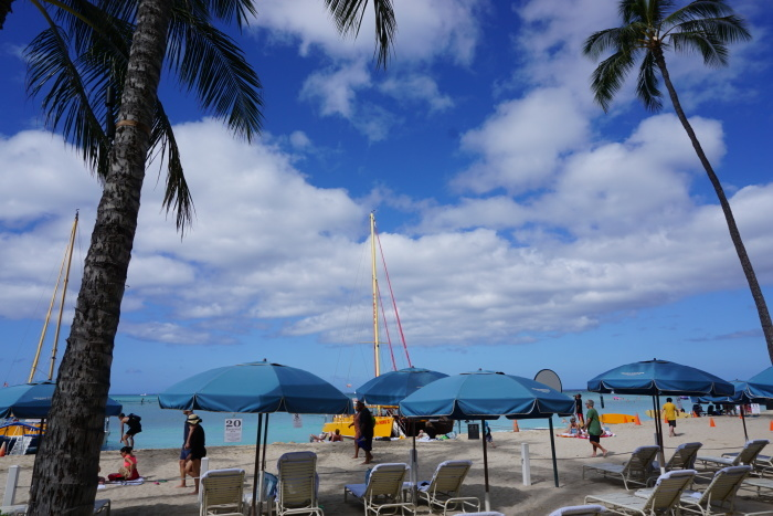 ハワイ旅行 6日目5月4日オアフ島最終日の朝 23_d0152261_12011773.jpg