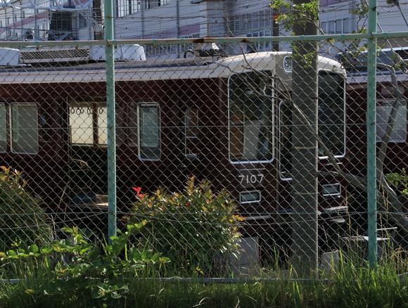 阪急正雀みたまま _d0202264_17264568.jpg