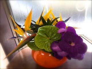 美容室の花_f0204368_00245373.jpg