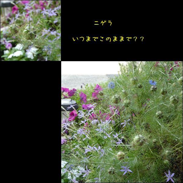 e0234881_22402231.jpg