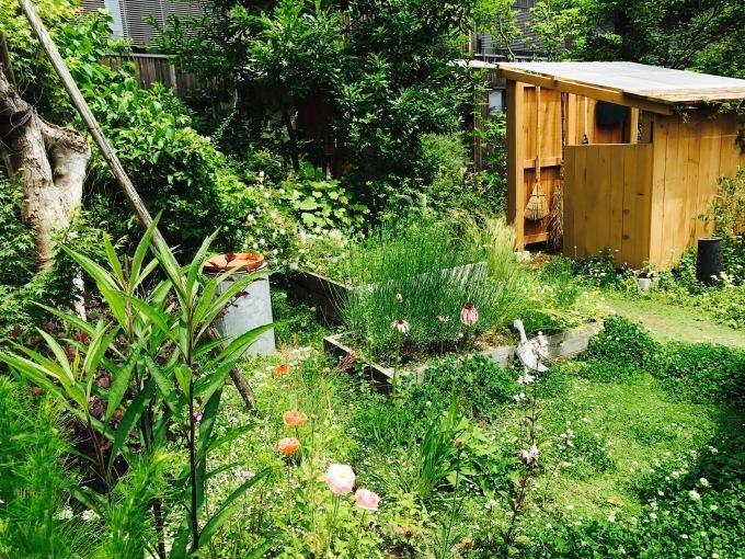 Kusaniwa  garden  0607_b0167282_17341237.jpg