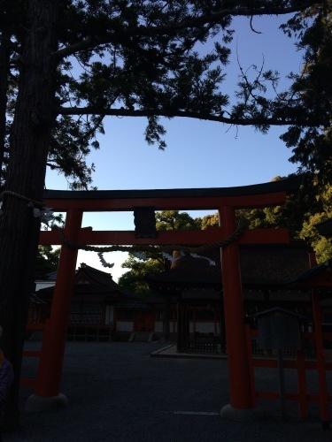 京都吉田山大茶会を終えて|中国茶教室残席あります_d0293004_11294599.jpg