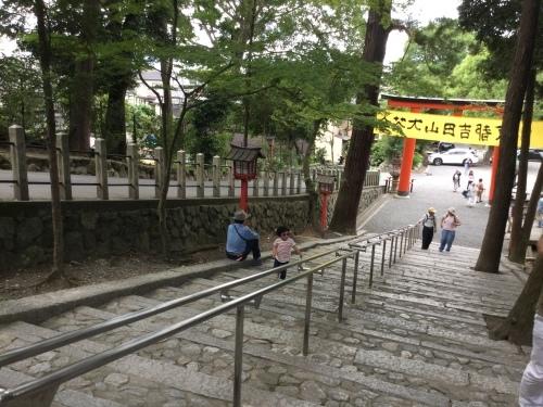 京都吉田山大茶会を終えて|中国茶教室残席あります_d0293004_11382552.jpg