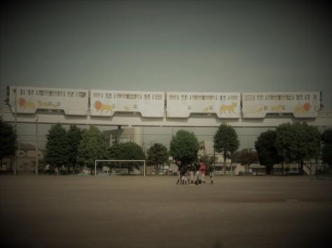 体育祭(運動会)_e0148909_23213217.jpg
