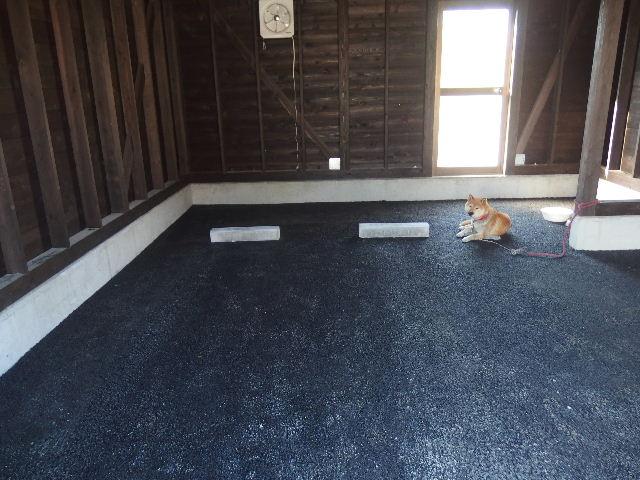 木造ガレージを造る  完成!_f0105112_4322159.jpg