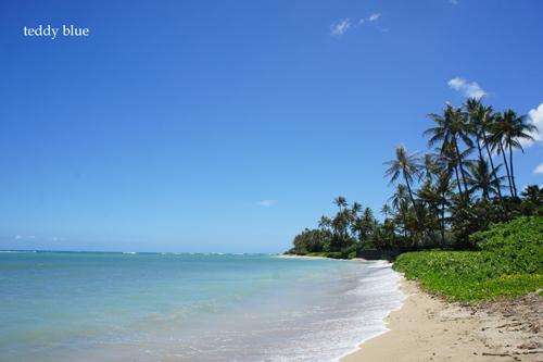 Hawaii trip 2017  ハワイトリップ vol.2_e0253364_14593013.jpg