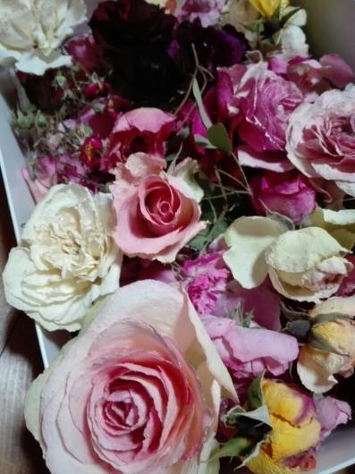苺のパンツが可愛い押し花_e0356469_22193448.jpg