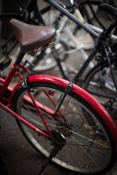 原色の自転車_d0353489_16571187.jpg