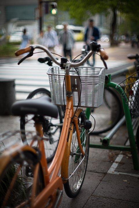 原色の自転車_d0353489_1658597.jpg
