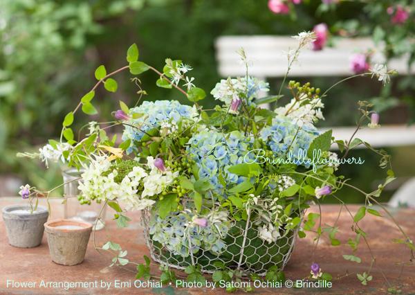 6月の花  Brindille フラワーカレンダー 2017 より_b0138802_00145570.jpg