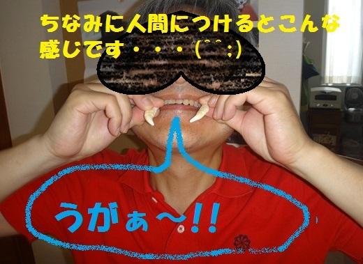 f0121712_16305641.jpg