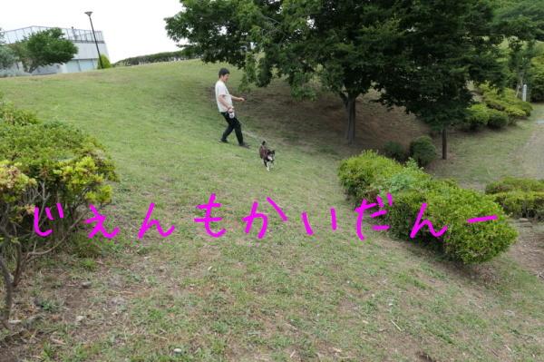 f0369014_14362494.jpg