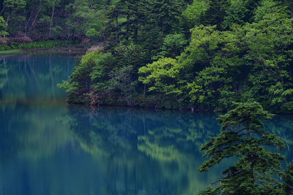 オコタンペ湖_a0145819_514621.jpg