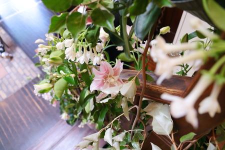 初夏の装花 一生に一度の素敵な一日に ザ・ハウス白金様へ_a0042928_20322866.jpg