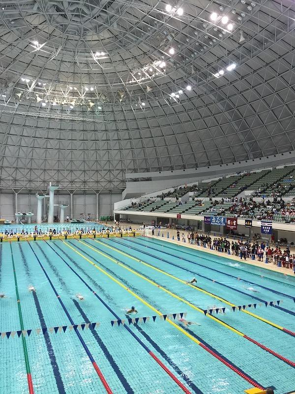 水泳とリス_c0113733_08521930.jpg