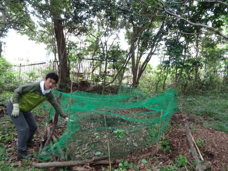 草刈りすればマムシに当たる・・・うみべの森を育てる会定例活動日・・・せんなん里海公園内うみべの森_c0108460_23435844.jpg
