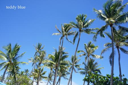 Hawaii trip 2017  ハワイトリップ vol.2_e0253364_07321219.jpg