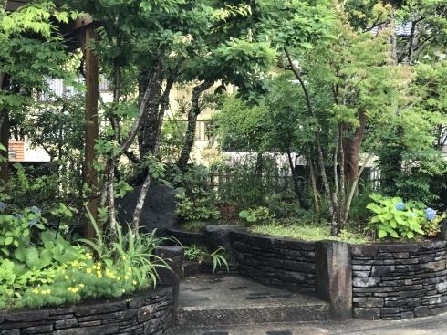 我が家の庭はローメンテGarden・・・・ノーメンテではありません。_b0137969_11263270.jpg
