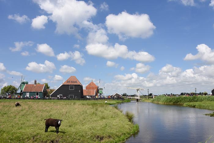 死ぬまでに行きたい世界の絶景!オランダ風車村ザーンセ・スカンス写真アップ!_e0171573_0574776.jpg