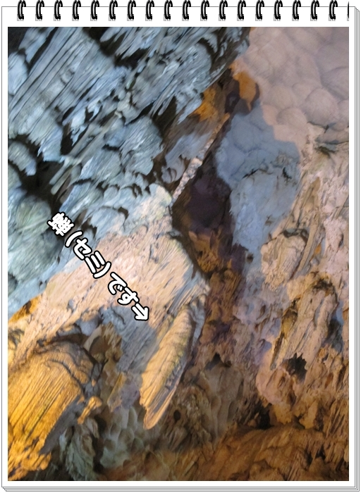 f0255500_22143312.jpg