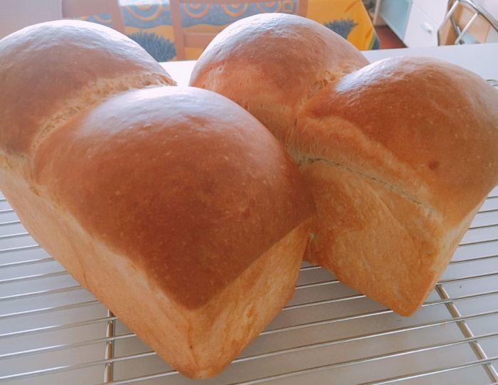 パン職人による 7月28日生食パン&スィートバンズレッスン _f0224567_00002110.jpg