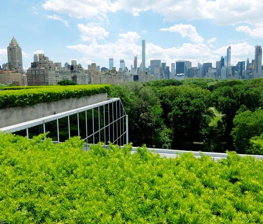 メトロポリタン美術館の屋上 rooftop sculpture garden_b0007805_14173.jpg