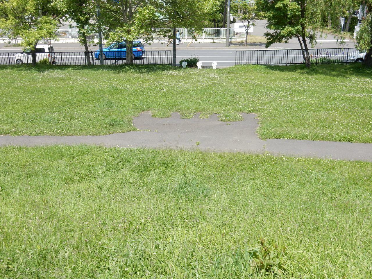 公園ランニングコースの不思議な構造_c0025115_21270429.jpg