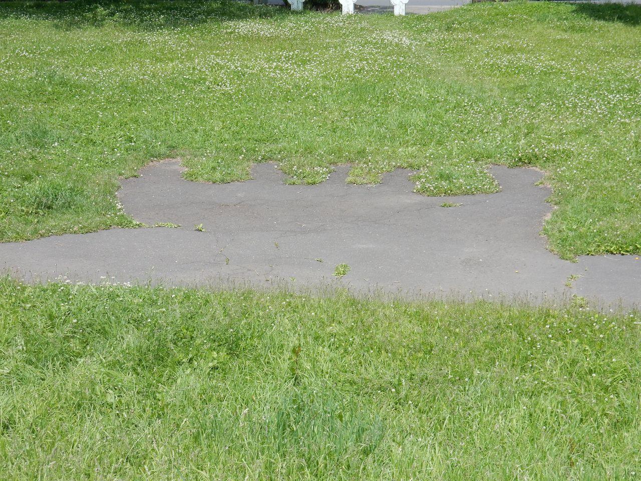 公園ランニングコースの不思議な構造_c0025115_21270858.jpg
