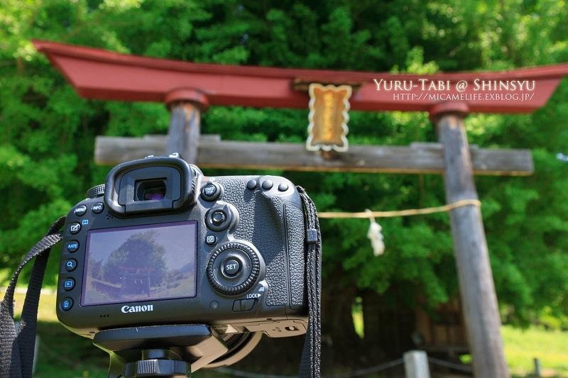 薫風のメロディー_e0347334_21020119.jpg
