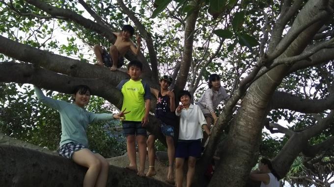 児童英検 開催日時決定!! と、 オーストラリア スタディーツアー 感想_b0193476_16154433.jpg