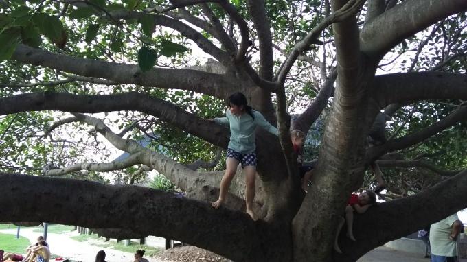 児童英検 開催日時決定!! と、 オーストラリア スタディーツアー 感想_b0193476_16221209.jpg