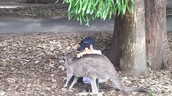 児童英検 開催日時決定!! と、 オーストラリア スタディーツアー 感想_b0193476_16500162.jpg