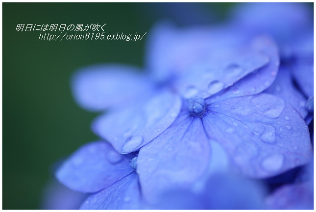 f0361079_17463724.jpg