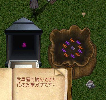 お花摘みの お土産_b0125989_17095961.jpg