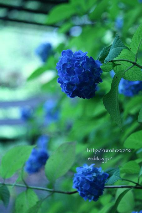 b0324291_00165364.jpg
