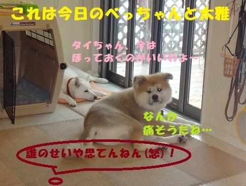 f0121712_22354437.jpg