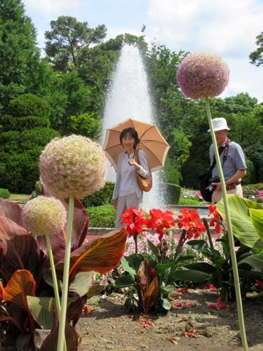 植物園花めぐり2_e0048413_22010360.jpg