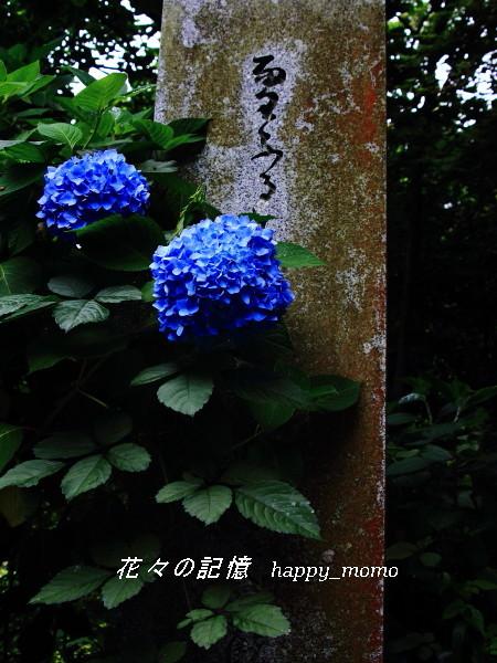 c0357781_17200159.jpg